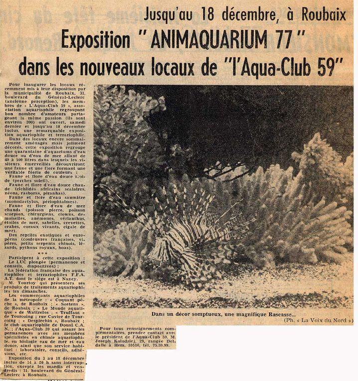 Articles de presse, de 1976 à nos jours...