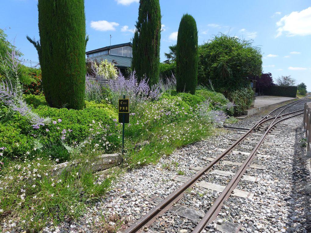 Sur la route de Bielle, arrêt, visite et pique-nique aux JARDINS DES MARTELS, une pure merveille.