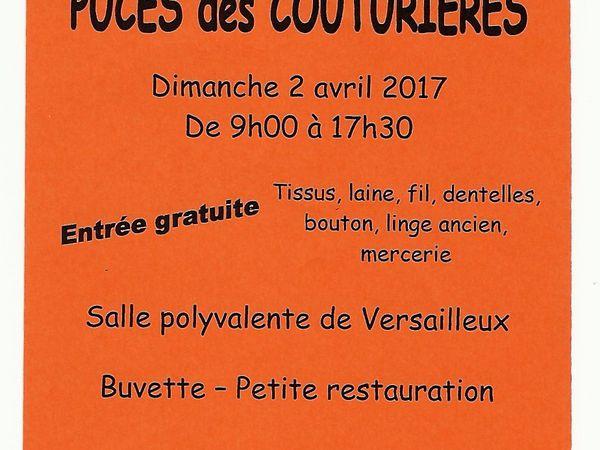Puces des couturières à Versailleux (01)