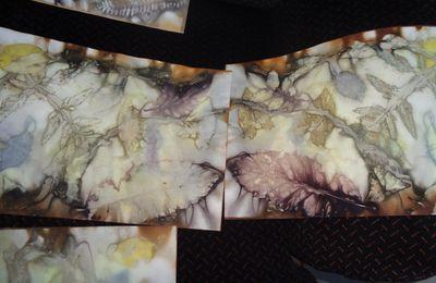 Rencontre à l'atelier de la Beuluette , sorcière de l'écoprint sur papier à NDDL