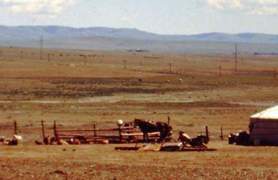 Time machine 2004 (3) : les steppes de Mongolie....