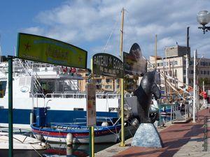 Le port et le bord de mer / Balade à Sanary dans le Var