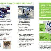 Rééducation canine : le Kerdog - ASVinfos - Le magazine web de l'auxiliaire vétérinaire
