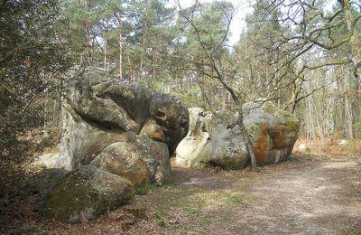 Randonnée Vtt en Forêt de Fontainebleau