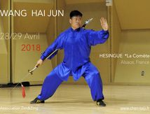 Wang Haijun workshop 2018
