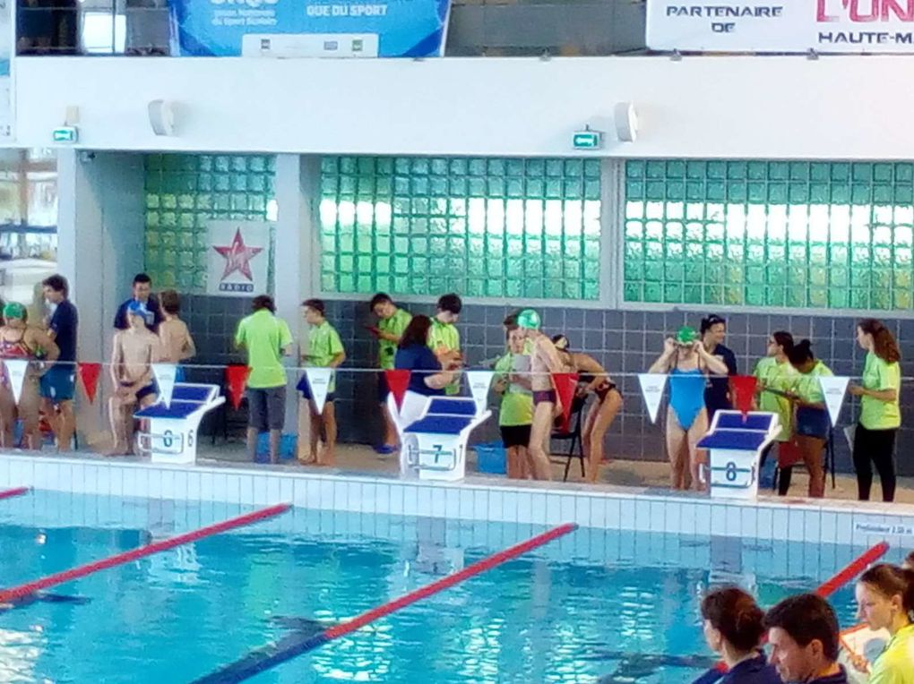 Equipe de natation qualifiée au championnat de France
