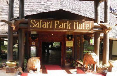 Safari park - Nairobi - Kenya
