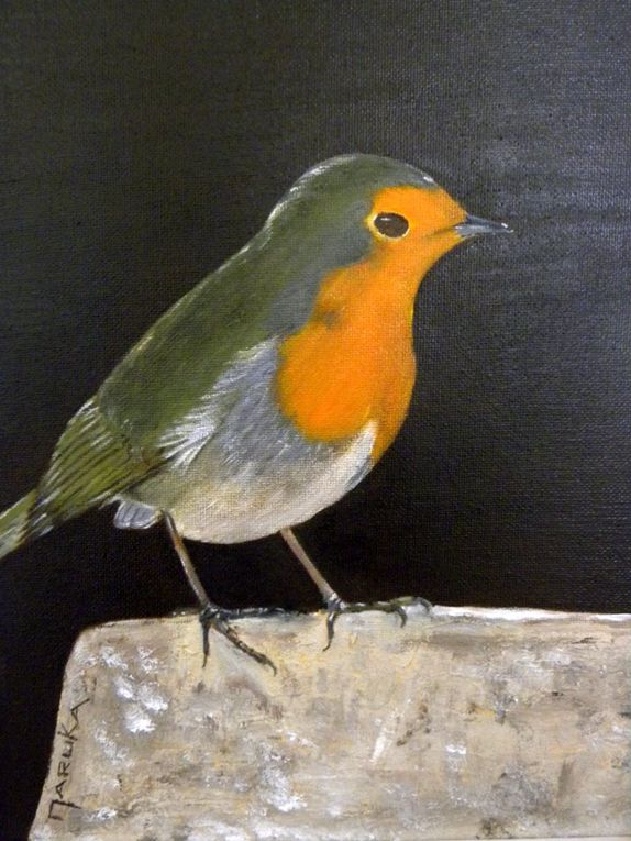 Album - mes peintures animalières