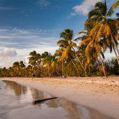 Le changement climatique menace la Martinique qui perd ses plages à vue d'oeil