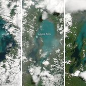 A Sudden Color Change on Lake Kivu : Image of the Day