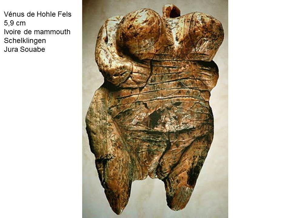 images du cours sur l'art préhistorique aurignagien et gravettien