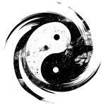 PROCHAINS STAGES QI GONG : DIM. 12 AVRIL 2015