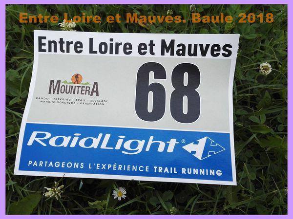Entre Loire et Mauves. Baule 2018.