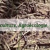 Permaculture, Agroécologie, Etc ...