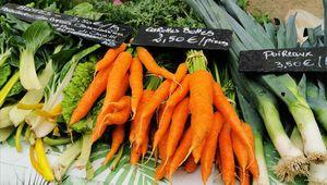 """""""Le potager des 4 mains"""" une ferme bio à Saint-Pierre-de-Chevillé."""