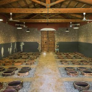 Sicile - Zibibbo, un vin étonnant