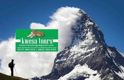Seeking The Best Tanzania Kilimanjaro And Safari Adventure Today