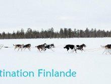 Destination Finlande : Paasilinna