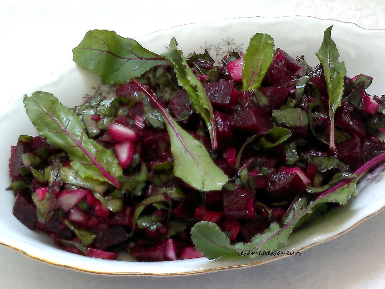 Salade de betteraves (feuilles et racines)