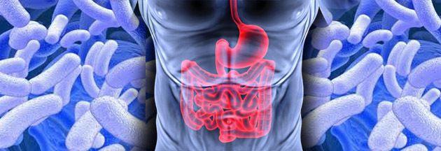 nutrition, pathologies et intestin!