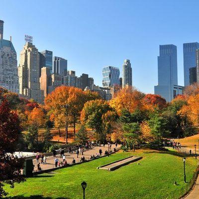 Amandine à New York