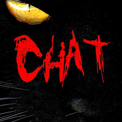 Chat de Ludovic Metzker