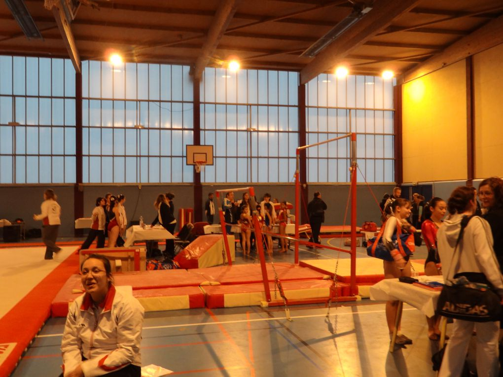Album - Gymnastique---competition-departementale