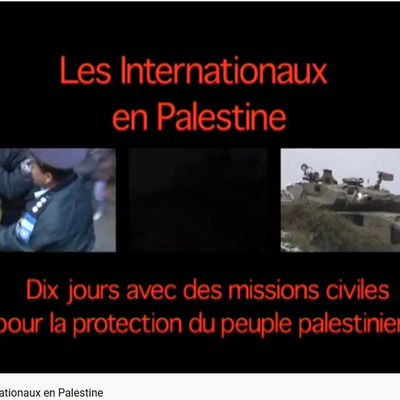 Les Internationaux en Palestine (Chris den Hond)
