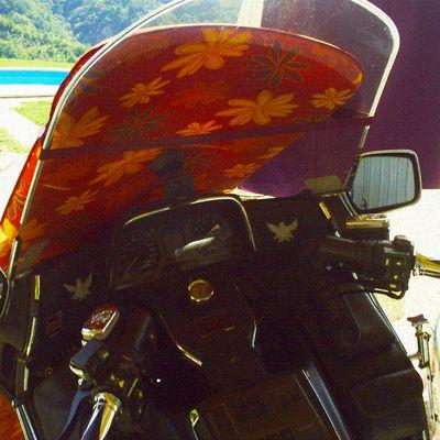Goldwing Unsersbande - la Croatie (Istrie) vers POREC en moto