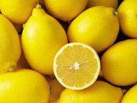 Douze règles toutes saisons pour bien s'alimenter et rester en bonne santé