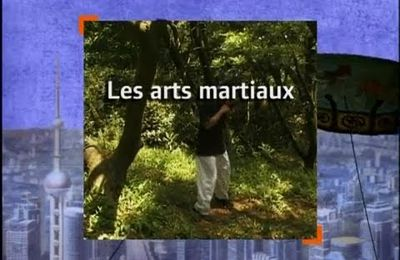 DOCUMENTAIRE ; CARNETS DE CHINE, LES ARTS MARTIAUX