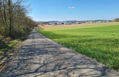 Ausbau der WÜ 3 Veitshöchheim/Gadheim:  Mit Asphaltfräsgut ausgebauter 1100 Meter langer Feldweg  muss wegen Überschreitung der PAK-Werte zurückgebaut und neu geschottert werden