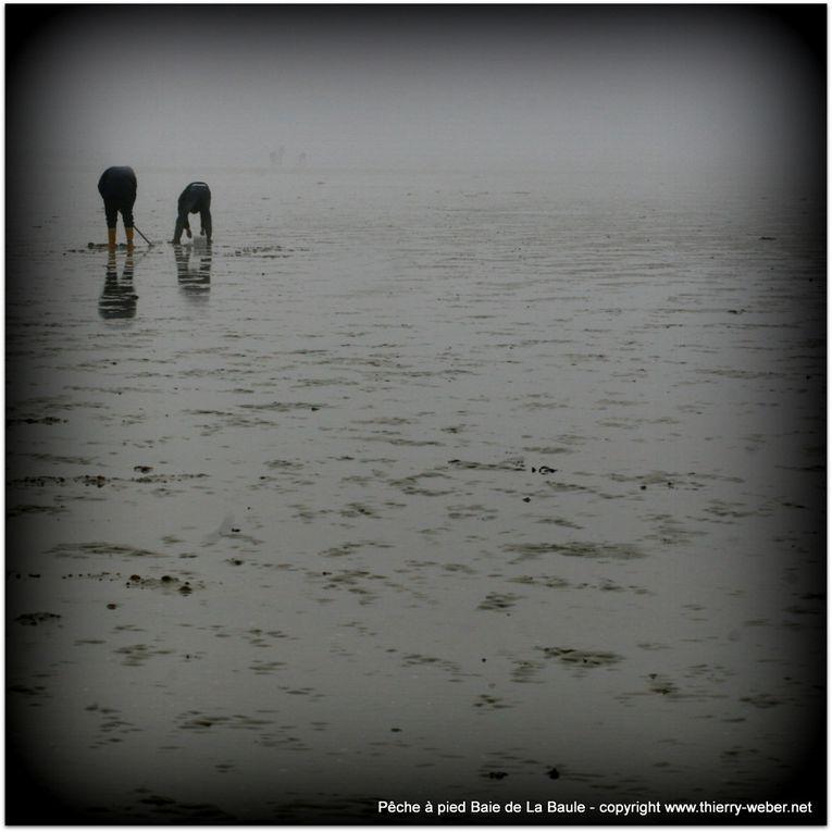 Album - Peche a pied