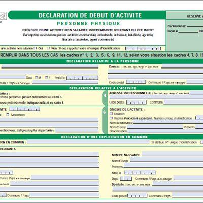 DÉCLARATION D'ACTIVITÉ (formulaire POI) pour les VDI