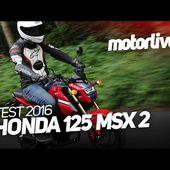 HONDA 125 MSX 2016   TEST