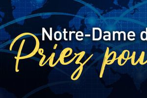 Avec le sanctuaire de Lourdes, du 17 au 25 mars 2020 Grande neuvaine à l'Immaculée :  Notre-Dame de Lourdes, priez pour nous !