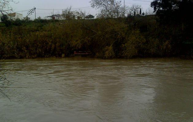 Album - Inundaciones Río Genil 05-03-2010 Badolatosa