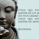 Bouddha - 38 citations - La vache rose