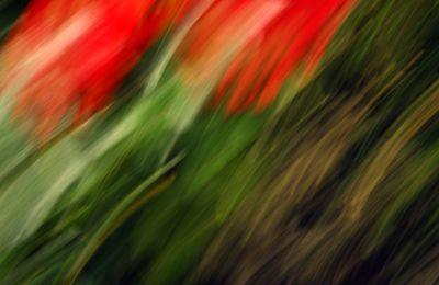 Abstrakte Fotografie  - gegenstandslose Fotografie