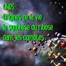 CNRS - Communiqué de presse : Origine de la vie : la pièce manquante détectée dans une « comète artificielle »