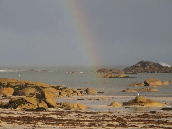 Cet hiver, les tempêtes ont balayé la Côte des Légendes...