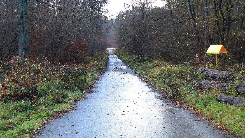 le carrefour du Taillis de Berne