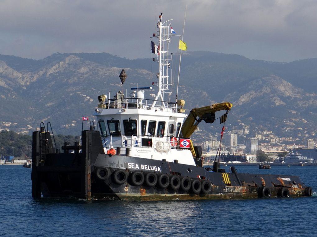 SEA BELUGA, arrivant dans le port de la Seyne sur Mer le 31 janvier 2018