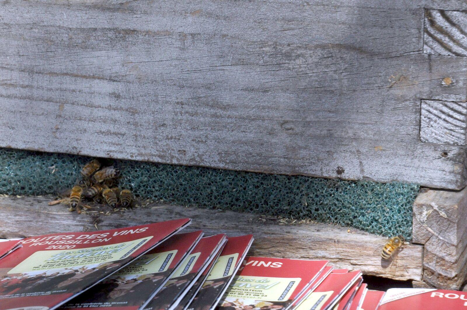 Les abeilles qui s'invitent.