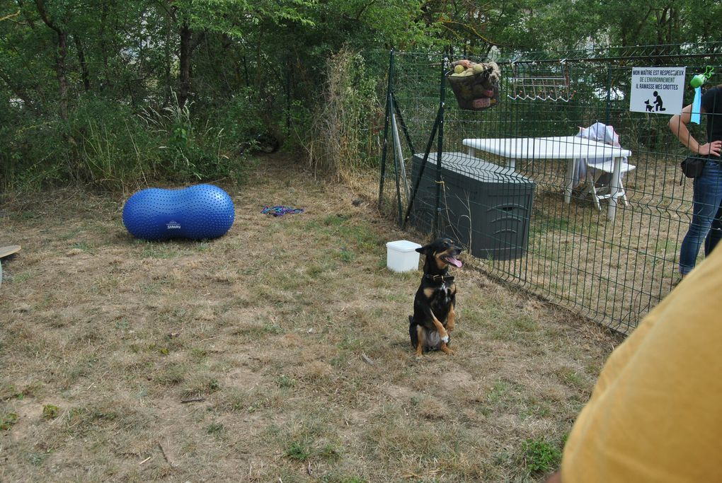 Visite Education Canine TRETS (2021)