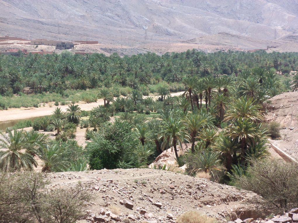 Album : Maroc Raid AMESFRANE