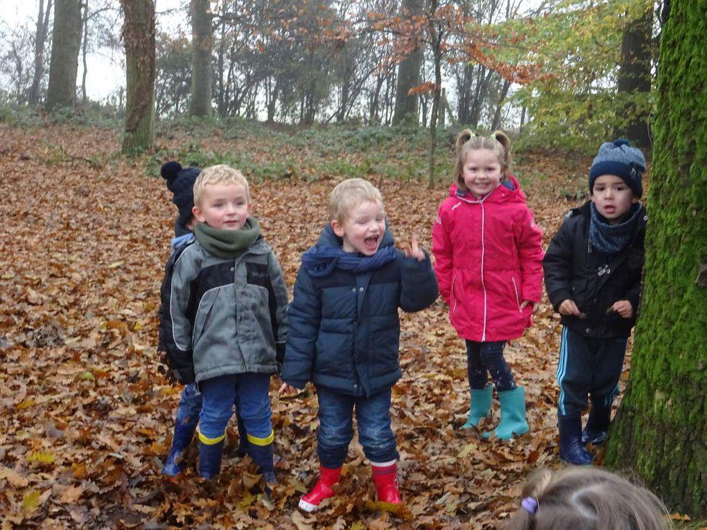 Sortie en forêt pour la Maternelle de Bréal