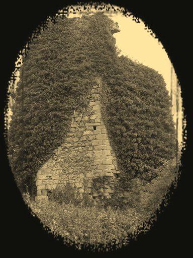 Diaporama château à Pleboulle
