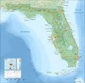 Les vignes de Floride