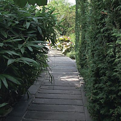 Misterbricolo aménage une allée dans son jardin ...